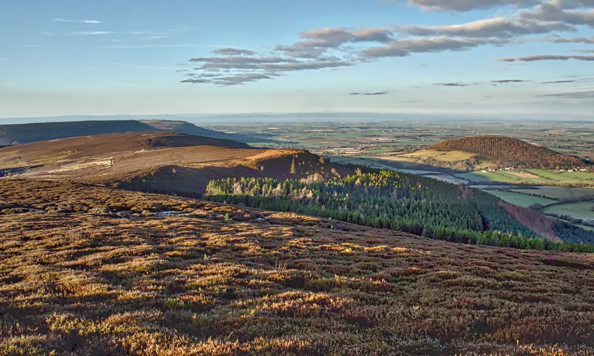 Gold Hill, Live Moor and Whorl Hill
