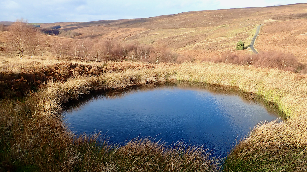 Little Hograh Moor Bomb Crater