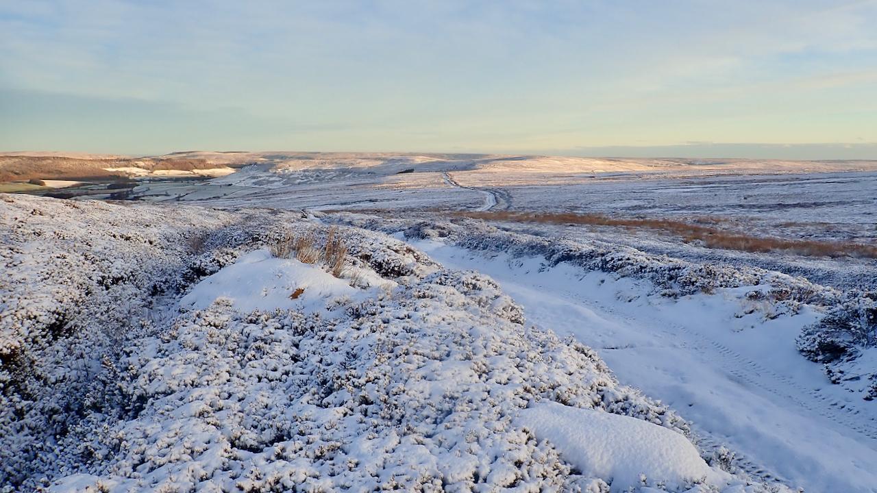 Ingleby Moor