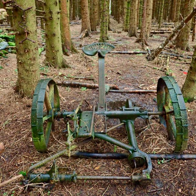 Abandoned engineering, Pifelhead Wood