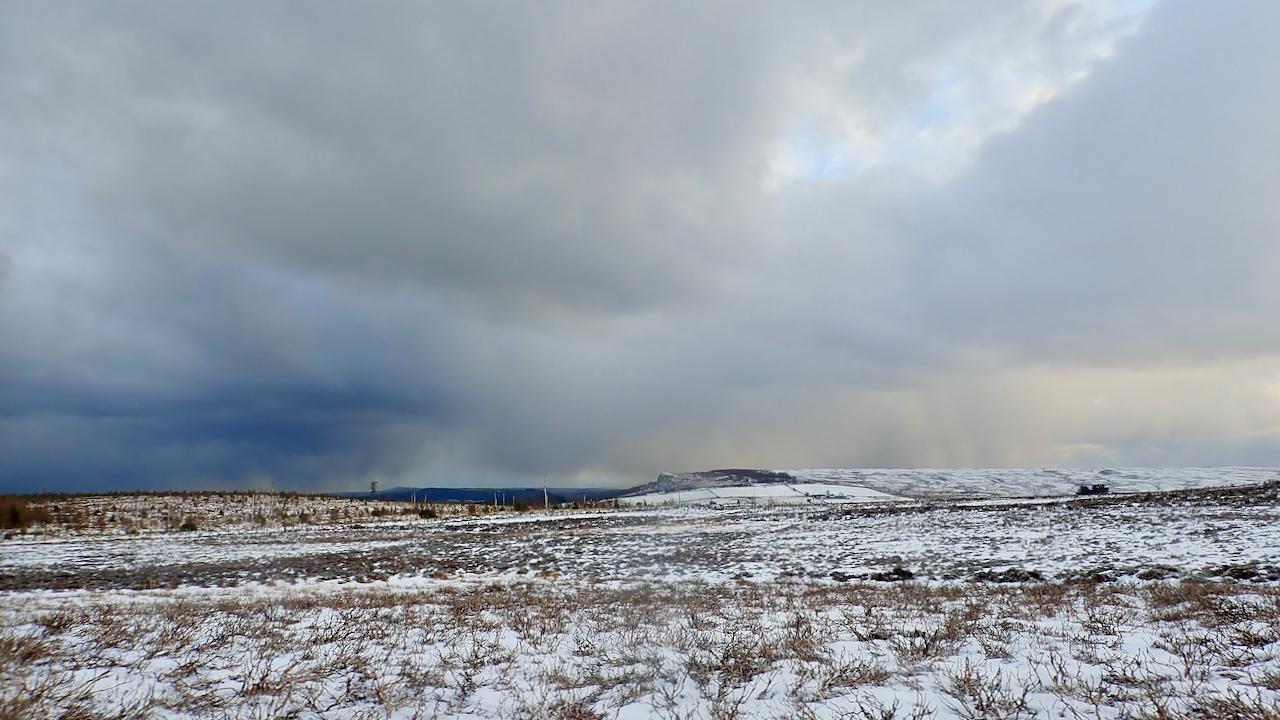 Newton Moor