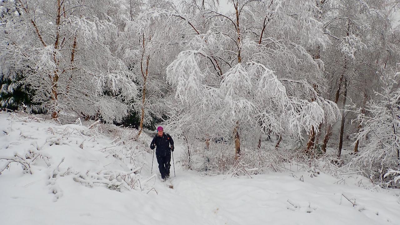 In Narnia