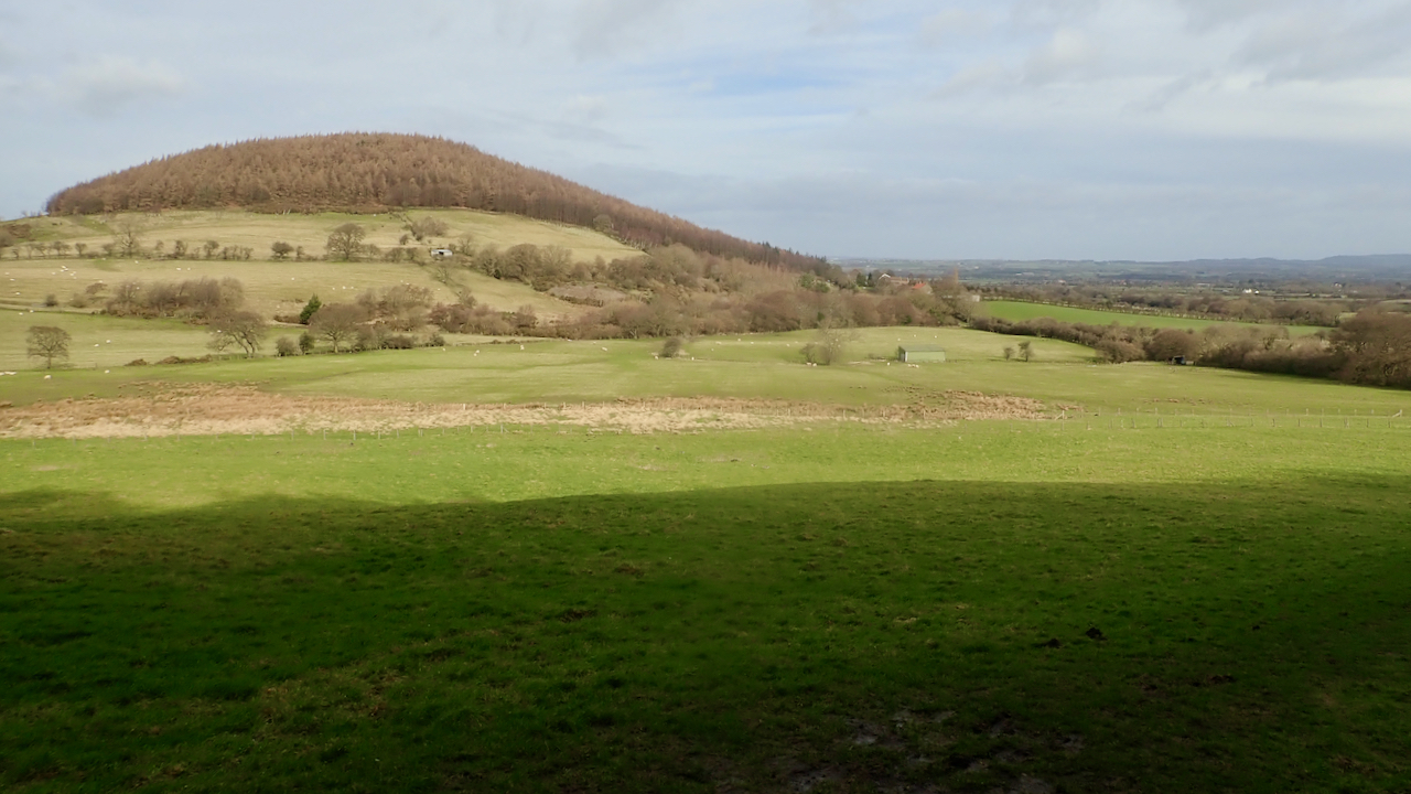 Whorl Hill