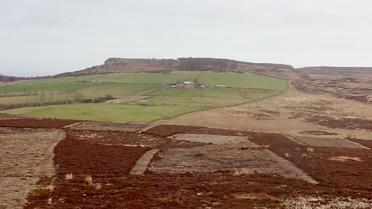 Potters Ridge