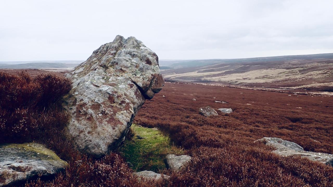 The Beast of Ingleby Moor