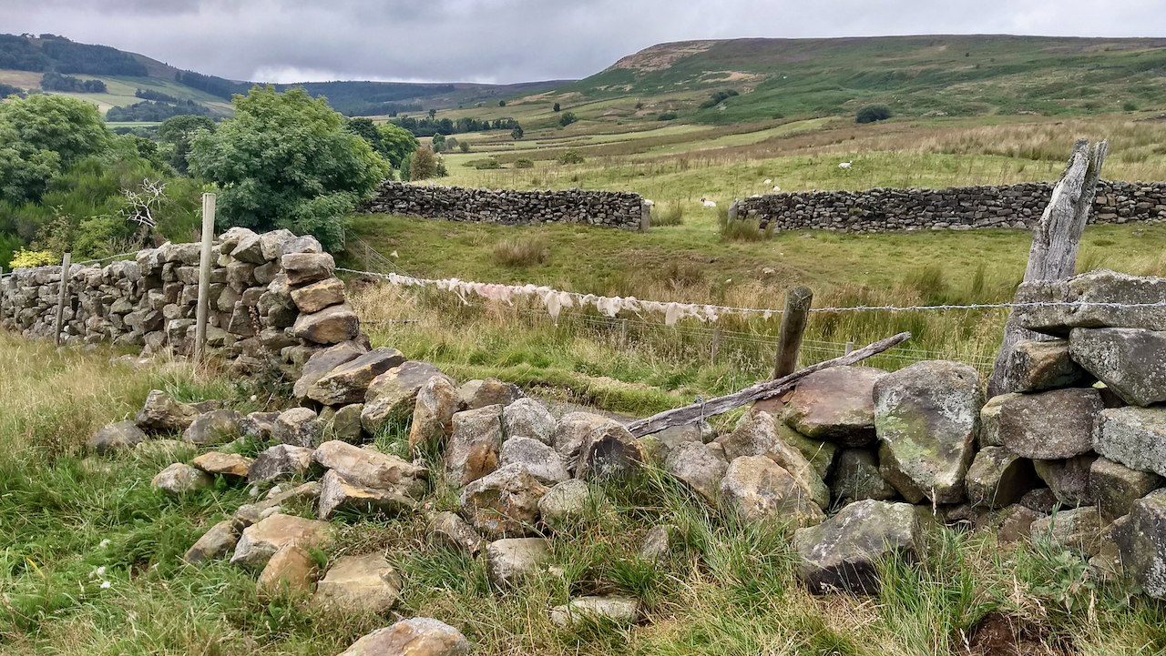 Dry Stone Wall, Bransdale