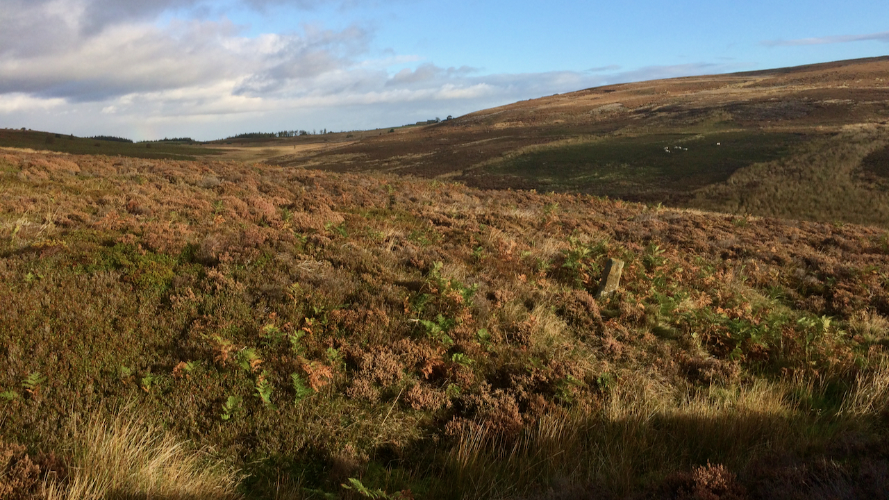 Standing Stone, Kildale Moor