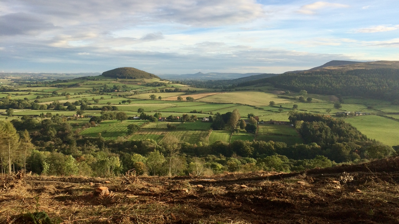Whorl Hill and lower Scugdale